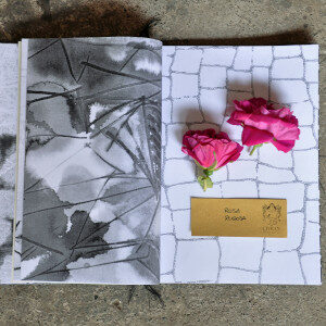 Erbario Civran - Rosa Rugosa (fiori eduli)