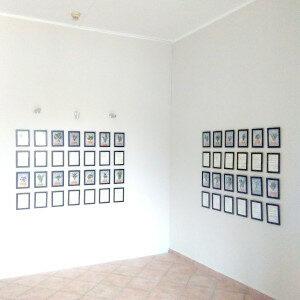 Erbario Civran al Museo del Gusto, II installazione